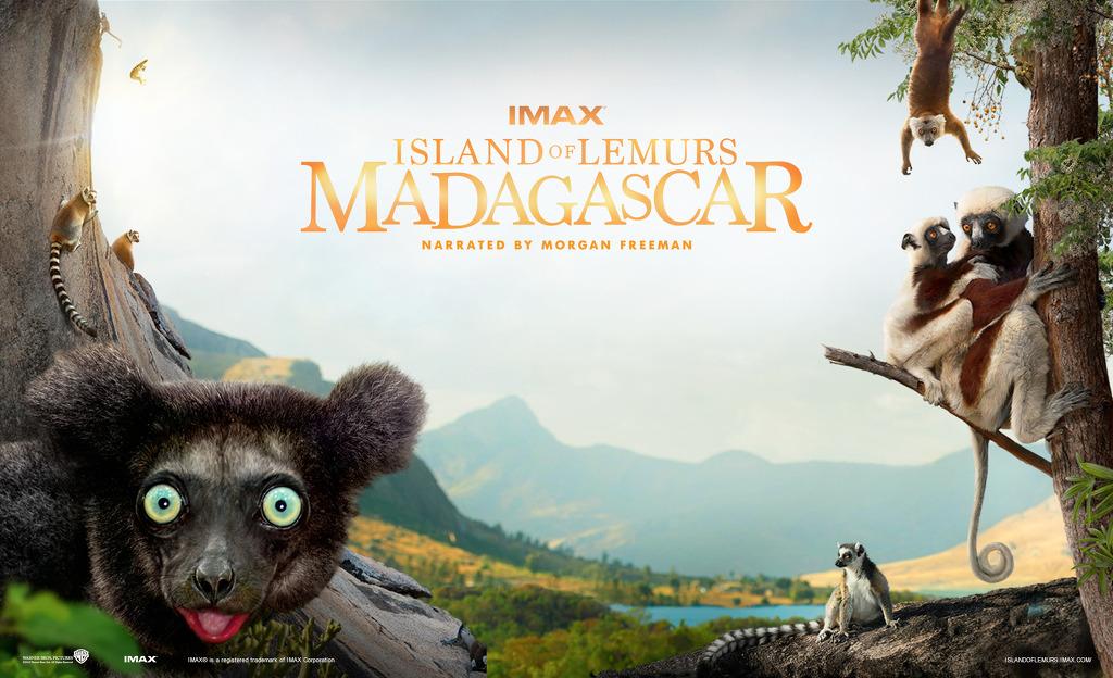 Ostrvo lemura: Madagaskar (Island Of Lemurs: Madagascar) 2014