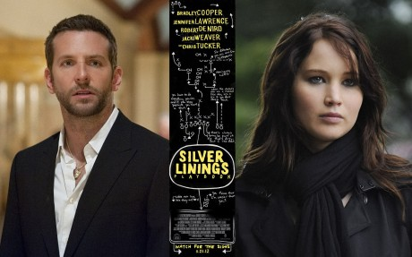 U DOBRU I ZLU (SILVER LININGS PLAYBOOK)